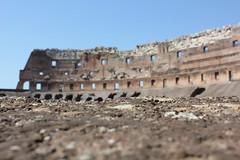 Colosseum (sarah_ah) Tags: italy rome roma colosseum romeitaly ancientrome thecolosseum colosseumrome colosseumroma insidecolosseum ancientcolosseum