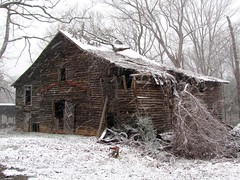 Barn in Snow 1 (David Hoffman '41) Tags: trees brown white snow texture abandoned nature overgrown weather barn rural virginia wooden spring vines wind farm neglected brush weathered decrepit reclamation charlottecourthouse charlottecounty platinumheartaward