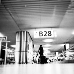 Be prepared ( brendan) Tags: travel holland travelling amsterdam modern wonderful wonder travellers terminal adventure schipol exploration departures ams commuters exciting arrivals iphone b28 intothefuture downlowperspective iphoneart livelearnlove rebelsab april2013 maninairport brendanapril