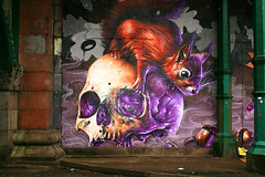 Wall Art (PeterEdin) Tags: city urban streetart color colour slr art wall canon painting eos rebel skull graffiti scotland town squirrel mural paint alba glasgow spray spraypaint dslr canoneos singlelensreflex graffitiart redsquirrel ecosse glaschu glasgowcitycouncil glasgowcity cityofglasgow 400d rebelxti canoneos400d canonrebelxti canon400d digitalsinglelensreflex
