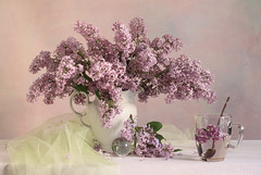 Les Lilas (panga_ua) Tags: pink light stilllife green art water floral composition canon dark spectacular lights spring artwork ceramics shadows perfume artistic sweet miracle embroidery availablelight pastel rich blossoms may ukraine poetic creation lilac bloom aragon strong imagination natalie bouquet delicate floralarrangement arrangement tenderness tabletop lilacs springtime gauze bodegon naturemorte crystalball panga artisticphotography rivne naturamorta artphotography coffeespoon sharpfocus heartshapedleaves glasscup leslilas paintedbackground floralstilllife woodentabletop whitetabletop  nataliepanga