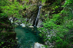 In the wild Val Pogallo (supersky77) Tags: alps water alpes river waterfall stream fiume piemonte gorge alpen acqua alpi gola cascata torrente cayon vco valgrande verbanocusioossola valpogallo pogallo parconazionaledellavalgrande alpilepontine