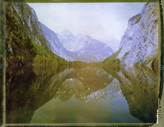 See Level (Bastiank80) Tags: camera trees lake mountains color film nature field analog polaroid mirror nationalpark woods large land instant 4x5 sheet format expired 79 obersee knigssee berchtesgadener wista