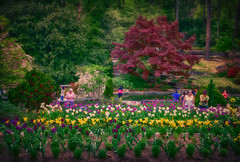 _MG_1931-copy (Photographist-C) Tags: color northcarolina dukegardens circularpolarizer tamron2875f28 canon5dii
