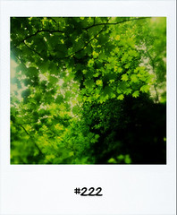 "#DailyPolaroid of 8-5-13 #222 • <a style=""font-size:0.8em;"" href=""http://www.flickr.com/photos/47939785@N05/8741549375/"" target=""_blank"">View on Flickr</a>"