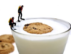 Cookie Rescue Team (cathy.scola) Tags: cookies miniature milk divers ho littlepeople onwhite tinypeople chocolatechipcookies cookiesandmilk hofigures
