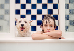 (angiel) Tags: boy dog white love smile bathroom happy bath friendship shampoo indoors tiles bathtime wethair westhighlandterrier companionship