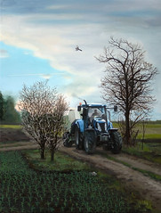 Munkba menet 2 / Going to work 2 (utcai david) Tags: tractor david work painting dawn traktor hajnal temerin utcai festmny