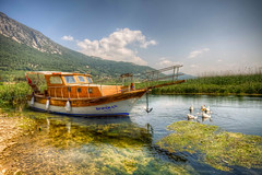 Akyaka, Mugla (Nejdet Duzen) Tags: travel holiday nature turkey boat canal stream trkiye goose kanal sandal kaz akyaka tatil turkei mugla seyahat doa azmak