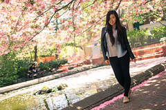 Cherry Blossoms (Alan Tan Photography) Tags: college alan brooklyn cherry photography pond blossom tan ng transitxd enlisa muscalphotography