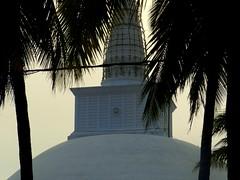 The magic of Sacred cities (The Shy Photographer (Timido)) Tags: world heritage unesco lanka srilanka ceylon anuradhapura shyish