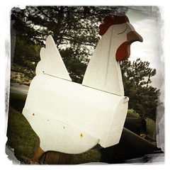 5/16/13 What's Better Than A Chicken Mailbox? (Karol A Olson) Tags: chicken mailbox whimsy maryland may13 iphone jessup royalfarms hipstamatic project3652013 fmsphotoaday