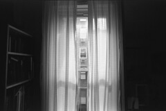 curtains (Topiary Expert) Tags: canonat1 kodak125px tmax14