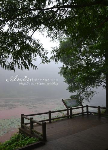 福山植物園_012.jpg