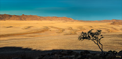 God's-window_DSC8985 (Mel Gray) Tags: trees nature landscape scenic fields aus namibia godswindow