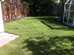 """Turfing - finished result just after being layed • <a style=""""font-size:0.8em;"""" href=""""http://www.flickr.com/photos/72072497@N07/9502987004/"""" target=""""_blank"""">View on Flickr</a>"""