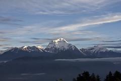Dhaulagiri range from Poon Hill (marciemarcia) Tags: nepal camp mountain night sunrise stars hill poon himalaya base annapurna dhaulagiri