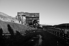 Waiting for the right light.... (The Bear Den) Tags: 1937 2sectimer 2014 alberta atlas3coalmine atlascoalmine autumn bw backroadsofalberta blackandwhite boomtowntrail canada canadianregisterofhistoricplaces countryroads drumheller eastcoulee edswift fallcolours fence finalweekendofsummer2014 formallyrecognized19890213 fromthearchives goldenhour grass havecamerawilltravel historicplace historicalalberta historicalsite ishootraw indiansummer landscape manfrotto055cxpro3tripodwitha327rc2head morning nationalhistoricsiteofcanada pentaxk20d prairie provinceofalberta provincialhistoricresource roadtrip roadslesstravelled rural september september21st shadows shadowsandlight summer sunrise thebearden thelastwoodentippleincanada tipple tripod uprp unpavedroadphotography waitingfortherightlight warm wildrosecountry woodenstructure smcpentaxda1855mmf3556alwr naturallightphotographer
