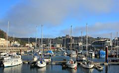 Dover Marina (AndyPolak) Tags: uk winter castle water marina boats coast boat town kent yacht bluesky mast yachts masts dover