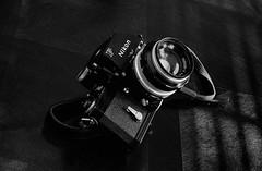 Nikon F on Kodak Tri-X 400 in LegacyPro L-110 (LamarLamb.com - Film) Tags: lamb lamar ei400 nikonf2photomic kodaktrix400 nikoncoolscanved vuescan nikkor85mmf18afd kodakfilms legacyprol110 lamarlambcom