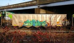 SIGH (BLACK VOMIT) Tags: car train graffiti ol south dirty dos sigh coal freight dirtyolsouth coalie