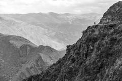 2014_Perou-1956 (benoitmcote) Tags: mountains peru southamerica trekking trek landscape hiking backpacking andes paysage cordillera montagnes highaltitude prou amriquedusud cordillre hautealtitude voyageen100photos
