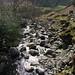 Dungeon Ghyll, Langdales, Lake District