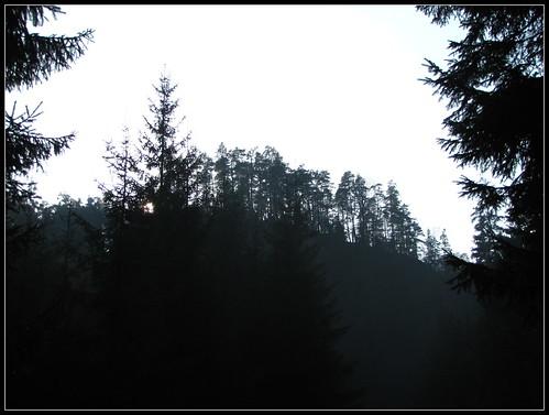 cundr_sweiz_2009_11_15_12_23_40_230