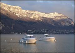 En vedette sur le lac (wilphid) Tags: annecy hiver lac soir hautesavoie