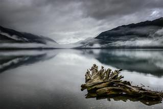 Lake Crescent Relic