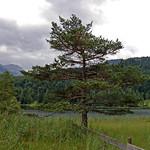 Mittenwald - Lautersee (14) thumbnail