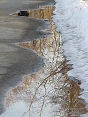 IMG_0095 (rlg) Tags: 20150316 monday march 16 2015 201503 0316 03162015 fpr canonsx50 cr2 path puddle reflection ppr