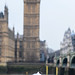 big-ben-pidgeon