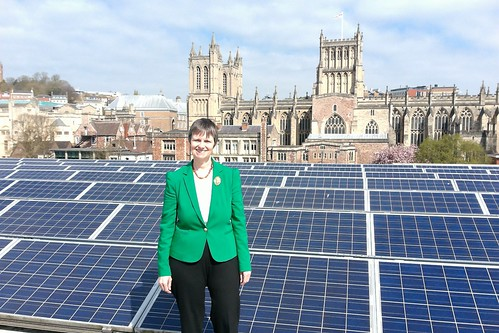Molly Solar Panels