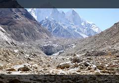 First Glimpse... It's very near.. (koushikzworld) Tags: mountain nature trekking photography fuji indian sony himalayas ganga gangotri gomukh carlzeiss shivling bhagirathi uttarakhand gaumukh koushikzworld koushikbanerjee