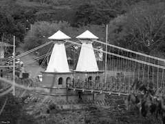 Occidente (felipebeatle) Tags: bridge bw architecture river landscape arquitectura antioquia