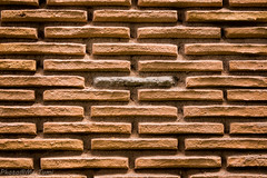 la voce fuori dal coro (mt.matumi) Tags: black sheep bricks nera mattoni pecora mtmatumi lavocefuoridalcoro