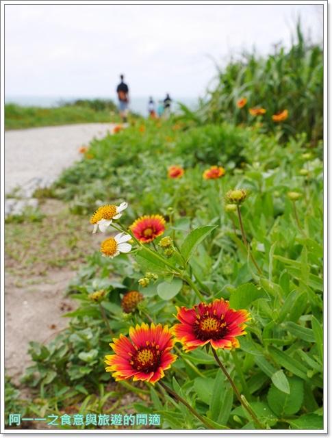 北海岸石門景點.富貴角燈塔.台灣百合.小旅行.踏青步道image012