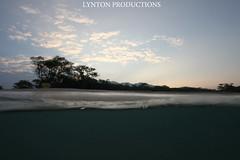 IMG_3909 copy (Aaron Lynton) Tags: beach canon big spl beah makena shorebreak lyntonproductions