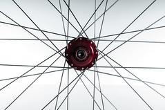 Velocity_Dually_Profile_Front_Detail (Cycle Monkey USA) Tags: trail riding mtb trailriding customwheels profileracing velocityusa