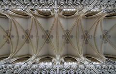 Beverley Minster (steve whiteley) Tags: church minster beverley beverleyminster