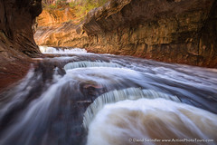 Sheets of Water (David Swindler (ActionPhotoTours.com)) Tags: subway waterfall flood canyon zion zionnationalpark thesubway leftforknorthcreek