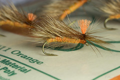 Orange Nelson caddis (Masi Hast) Tags: flyfishing flytying dryfly