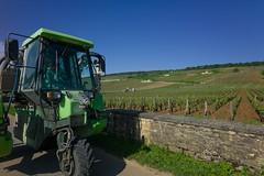 201607373 (Klaus Harbo) Tags: vin bourgogne beaune