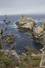 Point Lobos State Reserve (kevinmarquezphoto) Tags: california couple adventure pointlobos statereserve