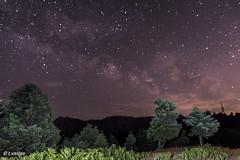 Milky way on Dirfys mnt (t.valilas) Tags: longexposure trees sky mountain stars landscape nightshot outdoor greece milkyway evia steni euboia euboea dirfys