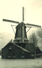 Molen 't Roode Hert (Regionaal Archief Alkmaar) Tags: mill alkmaar molen wieken molens oudorp munnikenweg
