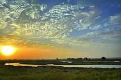 Marismas. Punta del Moral (Huelva) (Angela Garcia C) Tags: marismas paisaje relieve orografa vegetacinderibera nubes puntadelmoral hidrologa huelva vegetacin geografafsica