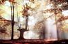 Urkiola... (Jabi Artaraz) Tags: artaraz jartaraz zb euskoflickr urkiola spain aplusphoto superaplus nature natura naturaleza hayedo pagadia landscape jabiartaraz