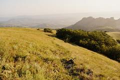 elizabeth_raccoon_44 (elizabeth_raccoon) Tags: summer russia mountains field grass flowers sky